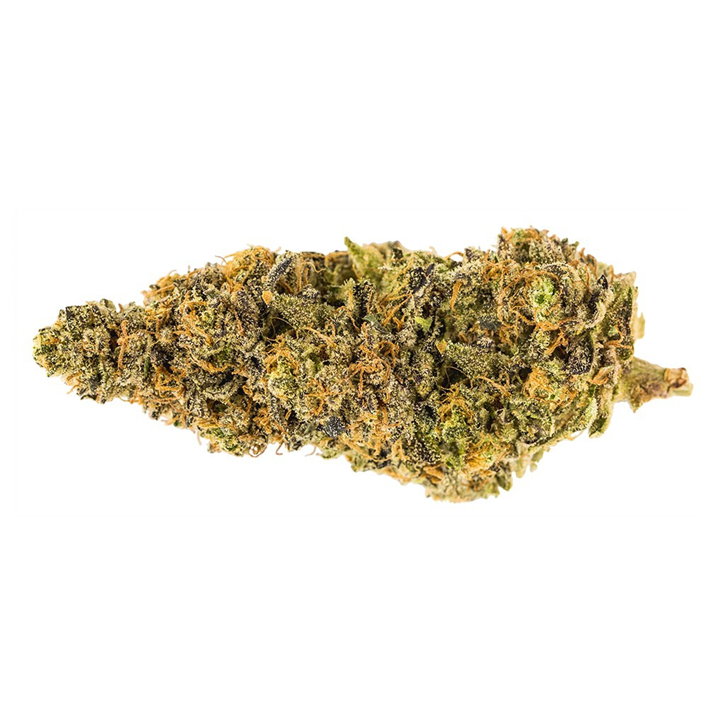 Garlic Breath - Carmel - Dried Flower