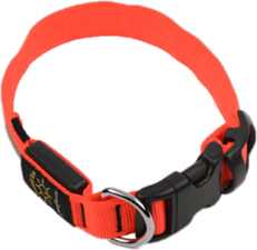 Nite Ize Nite Dawg Collar (Medium)