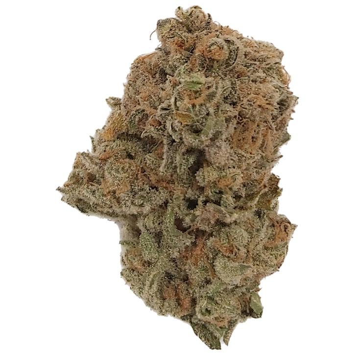 Lemon Pepper Spice - Dykstra Greenhouses - Dried Flower