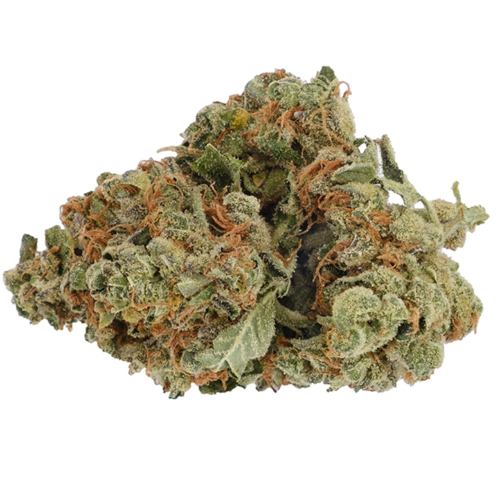 Pine Kush - Back Forty - Dried Flower