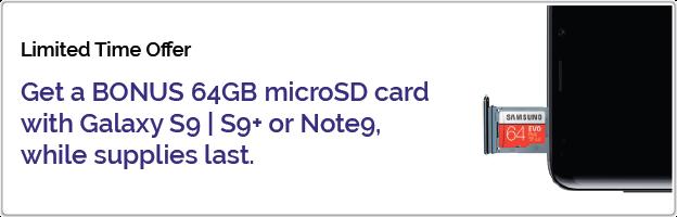 Bonus microSD card
