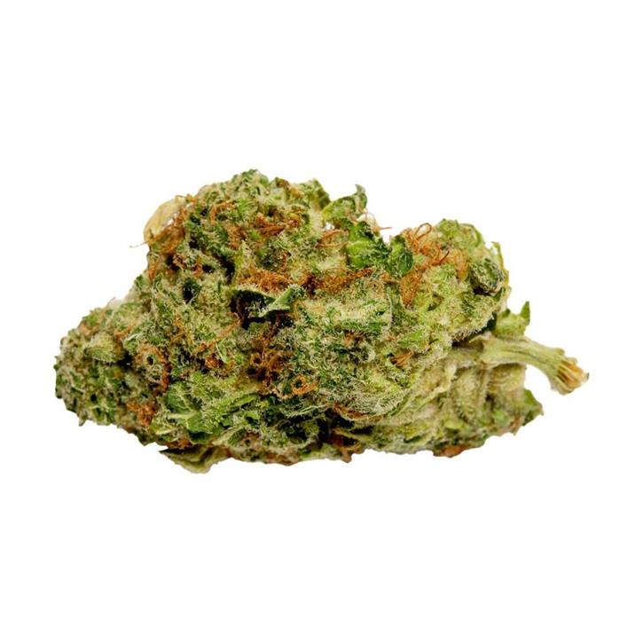 Grower's Choice Hybrid - Good Supply - Dried Flower