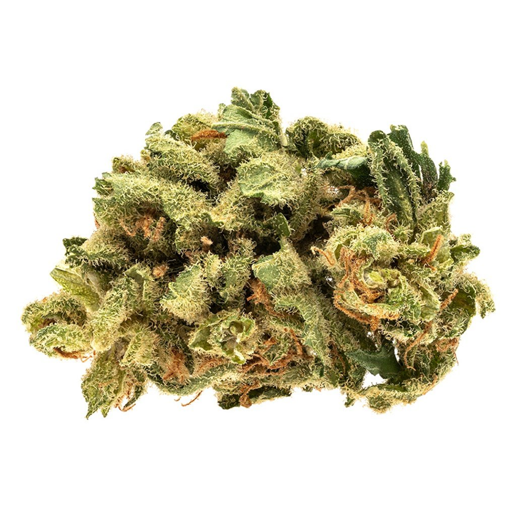 Raider Kush - RIFF - Dried Flower