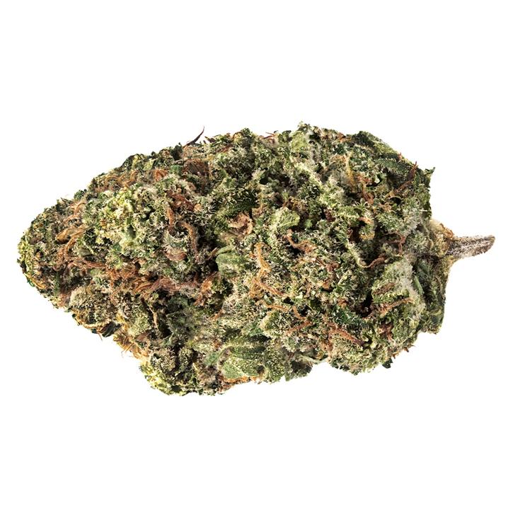 Jack Haze - 7ACRES - Dried Flower