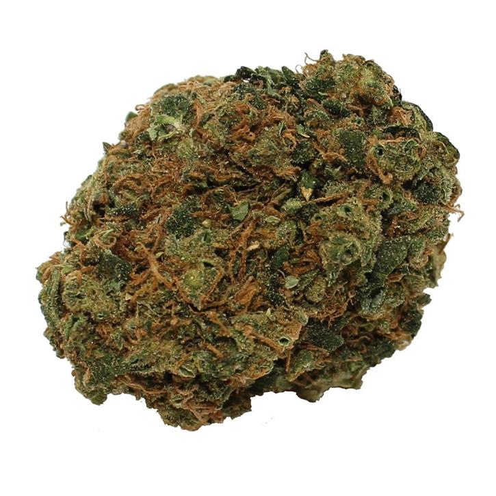 Chocolate Mint OG - Steel City Green - Dried Flower