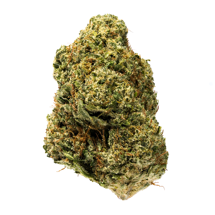 Sensi Star - 7ACRES - Dried Flower