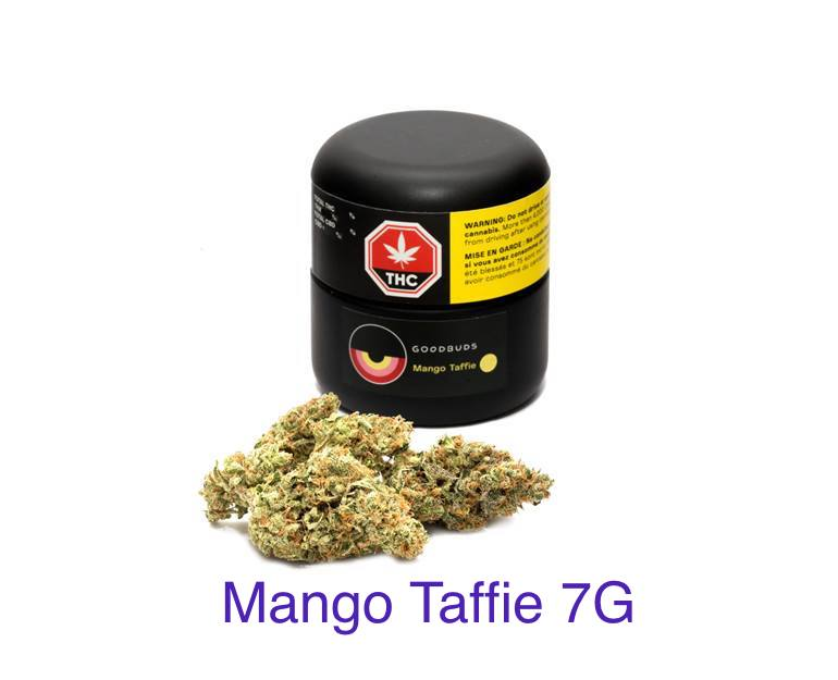 Good Buds - Mango Taffie 7g Dried Flower Image