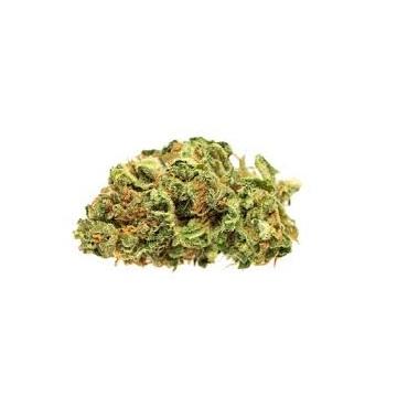 Jean Guy - Good Supply - Dried Flower