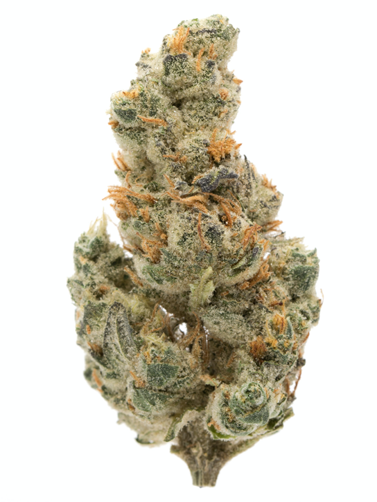 GMO Cookies - Spinach - Dried Flower