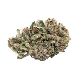 Island Pink Head - Artisan Batch - Dried Flower