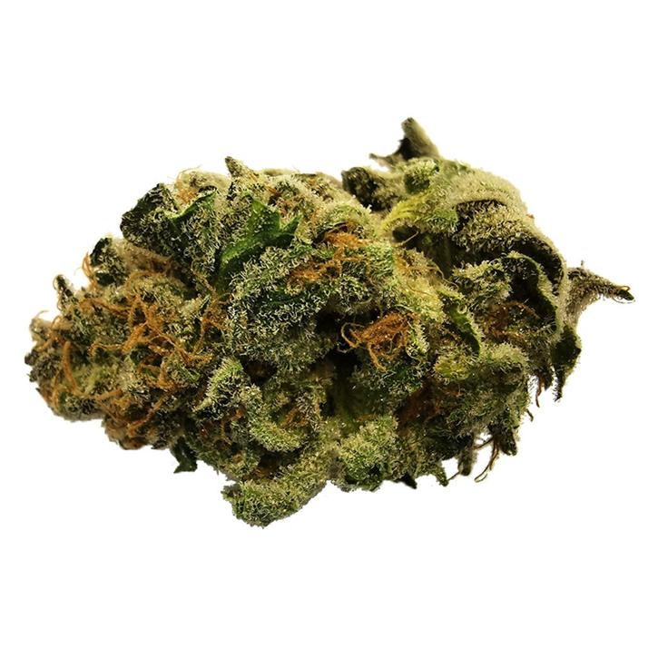Green Crush - 48North - Dried Flower