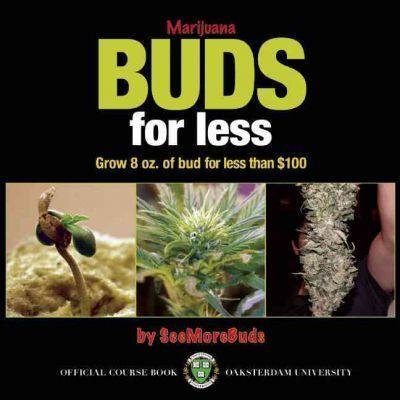 Marijuana Buds for Less