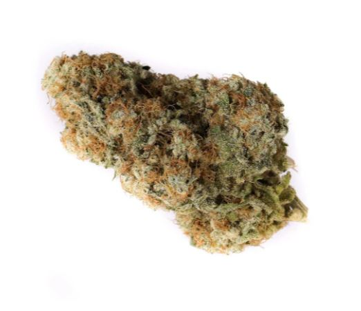 Lemon Z - OGEN - Dried Flower