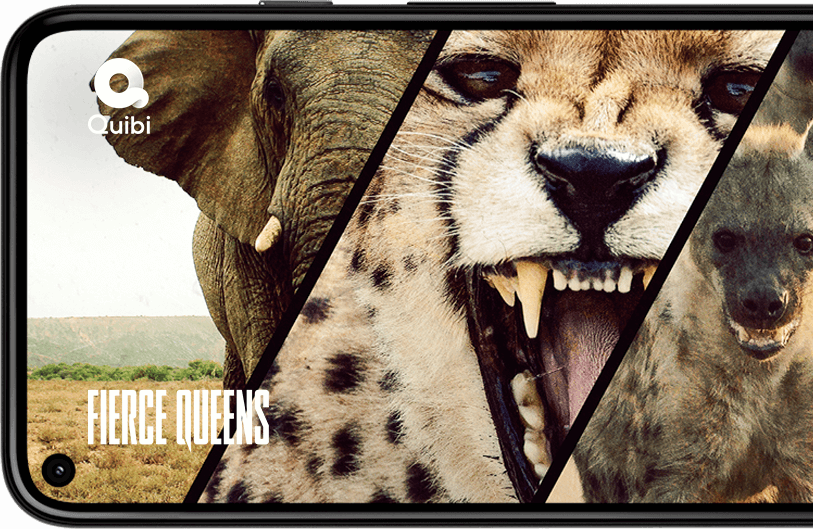 Image of Quibi playing Fierce Queens with exotic animals on the display