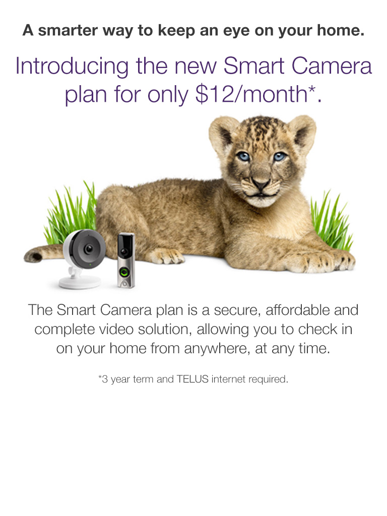 Smart Camera Plan