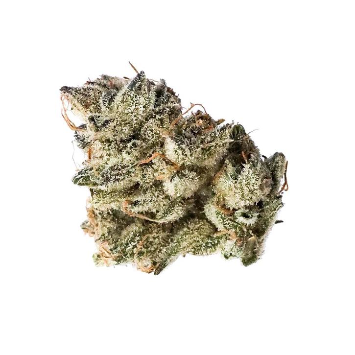 Early Glue RBx1 #15 - OGEN - Dried Flower