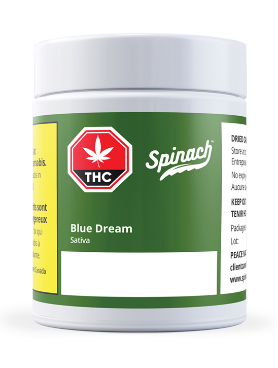 Blue Dream - Spinach - Dried Flower