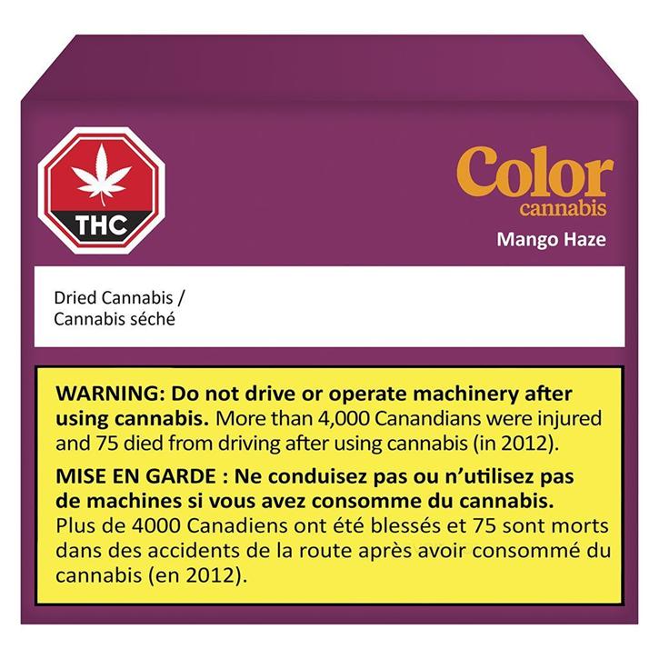 Mango Haze - Color - Dried Flower