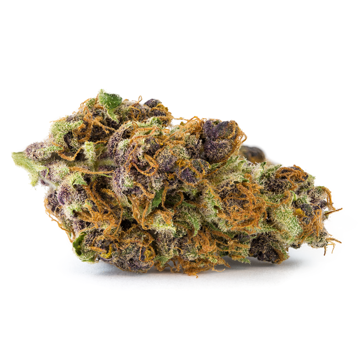 Tangerine Dream - CannaFarms - Dried Flower