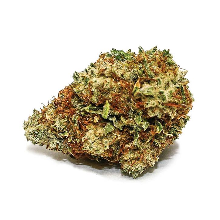 Sensi Star - Spinach - Dried Flower
