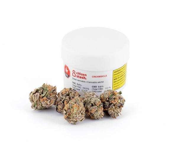 Creamsicle - Citizen Stash- Dried Flower