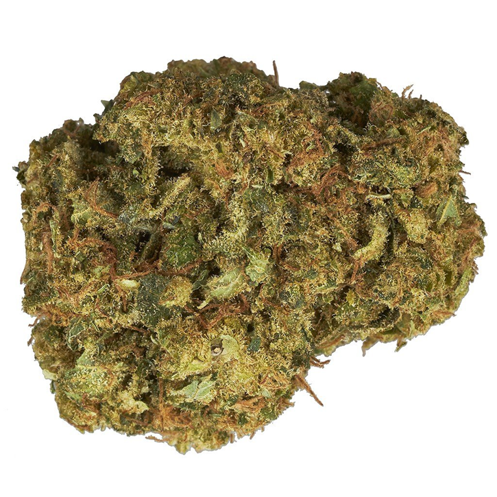Mango Haze - Color - Dried Flower